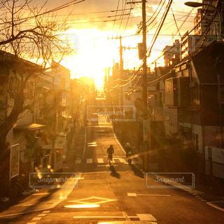 夕陽の中の写真・画像素材[1028726]