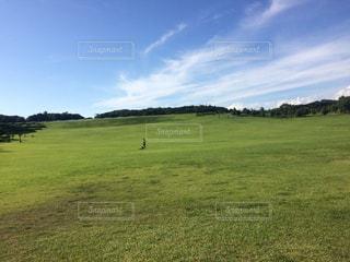 綺麗な空と草原の写真・画像素材[902427]