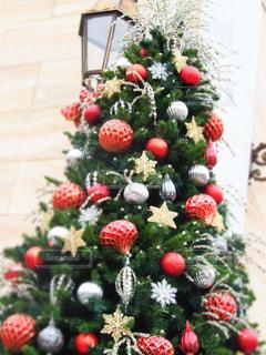 クリスマスツリーの写真・画像素材[903649]