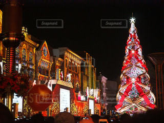 夜のライトアップされた街とクリスマスツリーの写真・画像素材[903650]