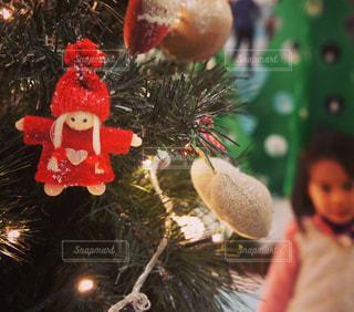 クリスマス ツリーの写真・画像素材[902352]
