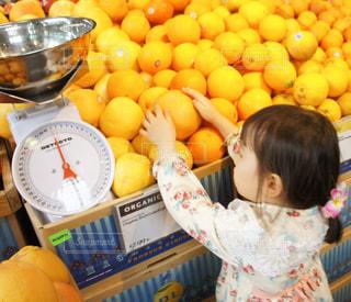 オレンジを選ぶ女の子の写真・画像素材[902366]