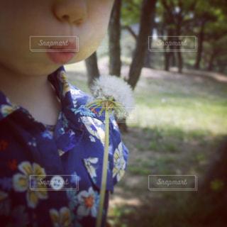 綿毛を飛ばす少女の写真・画像素材[902369]