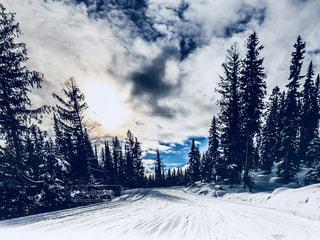 雪に覆われた斜面の写真・画像素材[910056]