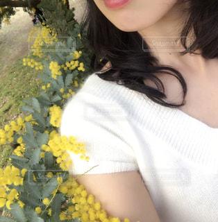 春の一枚の写真・画像素材[1030426]