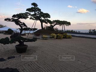熱海 相模湾を傍観できる日本庭園の写真・画像素材[904974]