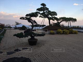 熱海 相模湾を傍観できる日本庭園の写真・画像素材[904975]