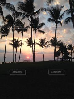 ボルネオ島ビーチ 夕日の写真・画像素材[904984]