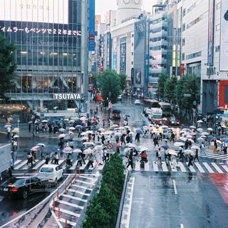 雨の渋谷スクランブル交差点の写真・画像素材[905240]