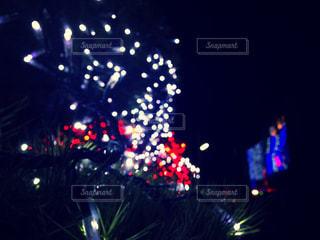 夜ライトアップされたクリスマス ツリーの写真・画像素材[916602]