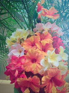 花の写真・画像素材[141260]