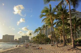 ワイキキビーチの写真・画像素材[1029985]