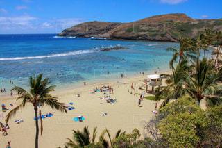 ハワイのビーチの写真・画像素材[1030023]