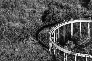 滑り台の写真・画像素材[906439]