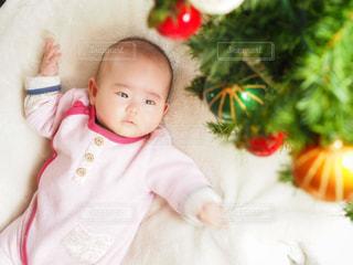 初めてのクリスマスツリーの写真・画像素材[907940]