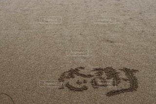感謝の写真・画像素材[911219]