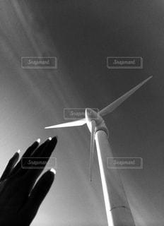 風力をうけての写真・画像素材[911981]