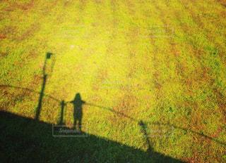 草原に映る影の写真・画像素材[911984]