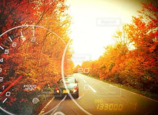 道路上の車の写真・画像素材[913859]