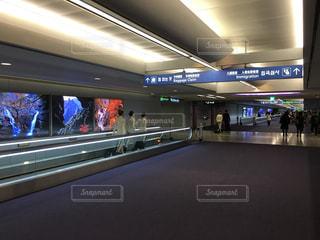 空港の写真・画像素材[907946]