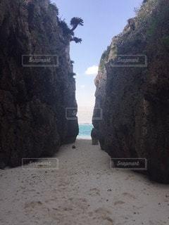 自然の写真・画像素材[28561]