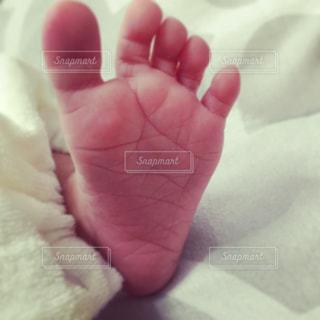 小さな足の写真・画像素材[1060637]