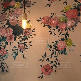 バラ 壁の写真・画像素材[1203998]