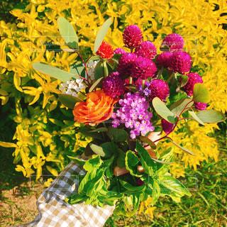 テーブルの上に座っての花で一杯の花瓶の写真・画像素材[1597473]