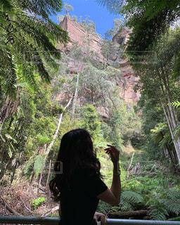 森の前に立っている人の写真・画像素材[1829970]