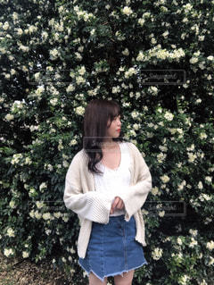 花の写真・画像素材[2026805]