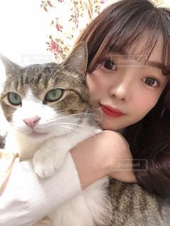 猫を抱いている女性の写真・画像素材[2958505]
