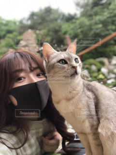 猫を抱いている人の写真・画像素材[3311915]