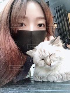 猫を抱いている女性の写真・画像素材[3636783]
