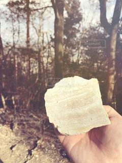石の層の写真・画像素材[1011379]