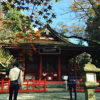 紅葉と神社 - No.909337