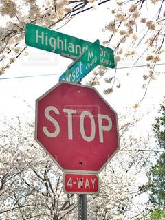STOP標識の写真・画像素材[1134150]