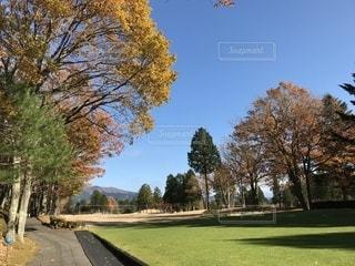 ゴルフ場の紅葉 - No.910491