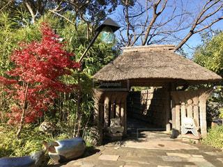 古民家入口の写真・画像素材[910497]
