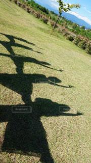 草原に写る人の影の写真・画像素材[910672]
