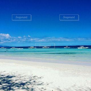 セブ島の写真・画像素材[911590]