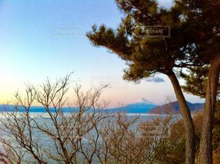 富士山の写真・画像素材[939515]