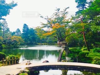 庭園の写真・画像素材[967132]