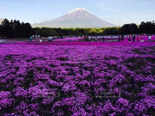 日本の風景 - No.967138