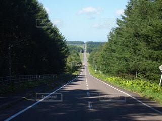 北海道は続くよどこまでもの写真・画像素材[913347]