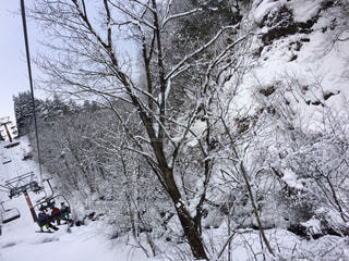 雪景色 - No.913898