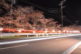 車のライトと桜の写真・画像素材[1086942]