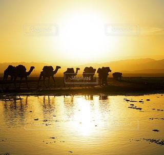 水の体の横に立っている人のグループの写真・画像素材[1068309]