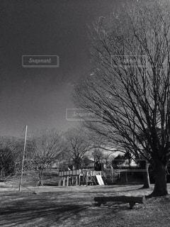 空っぽの公園の写真・画像素材[918175]