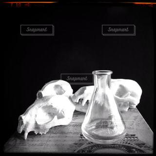 理科室コーナーの骨のレプリカの写真・画像素材[936373]