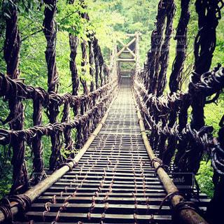 橋の上の人々 のグループの写真・画像素材[914170]